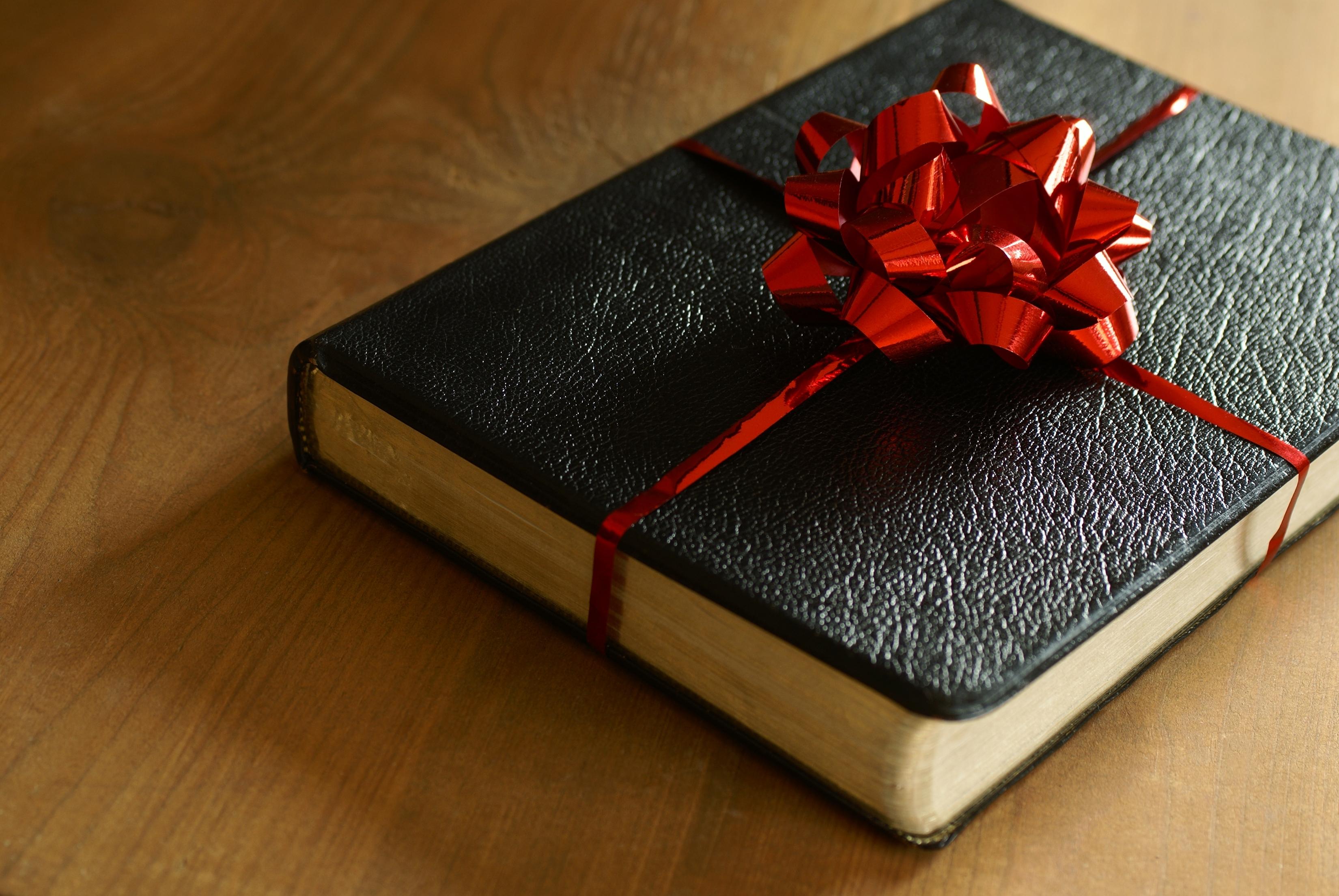 Spiritual Gifts  (luggage)